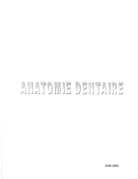 dentaire - Cours d'anatomie dentaire  Anatom10
