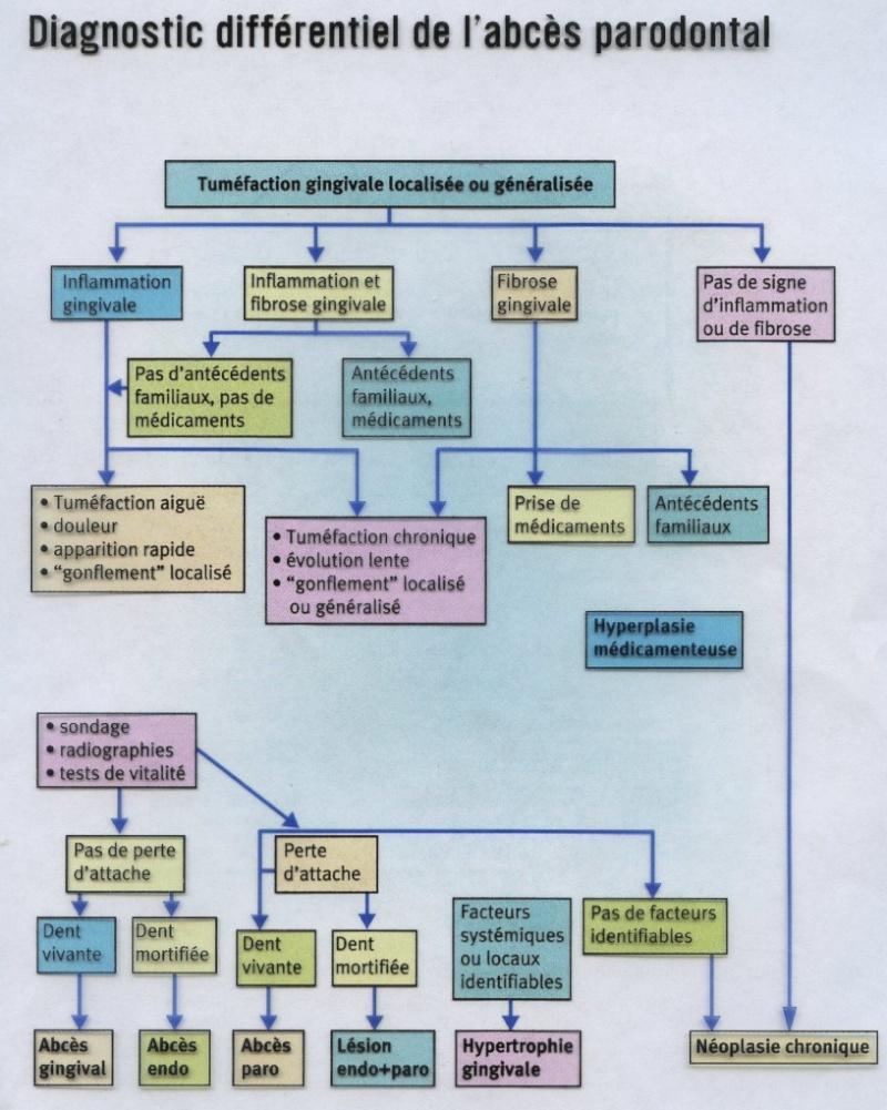 Diagnostic différentiel de l'abcès parodontal : Arbre décisionnel Arbre_10