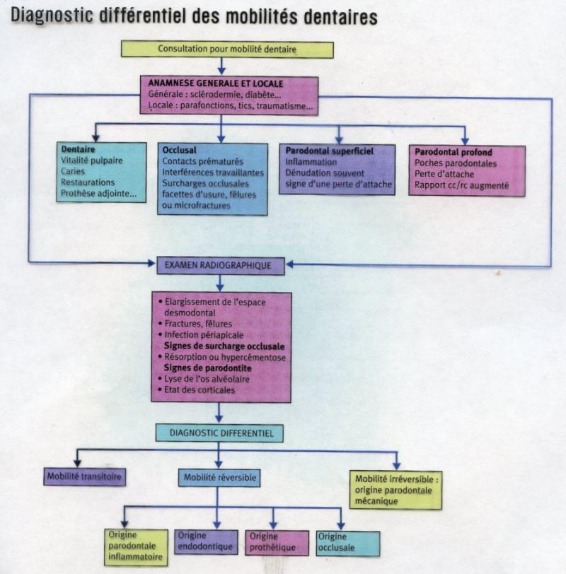 Diagnostic différentiel des mobilités dentaires -arbre décisionnel- D2-par10