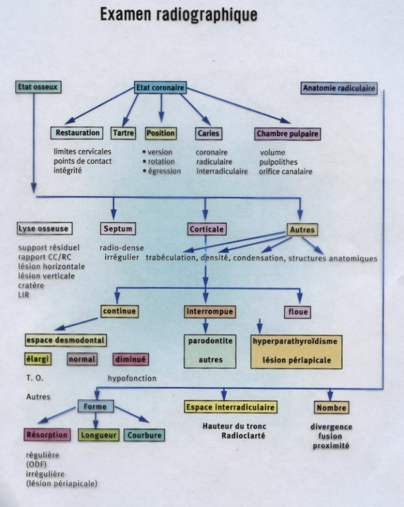 Examen radiologique : arbre décisionnel Examen10