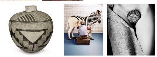 Juxtapositions oulipiennes d'images - Poésie des contrastes Art10