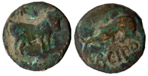 LACIPO 1128