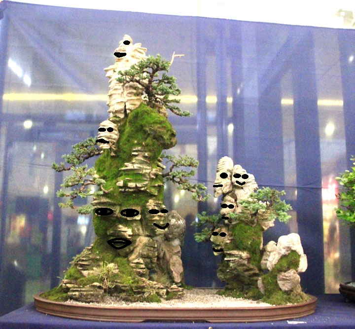 Penjing show - Page 3 Faces10