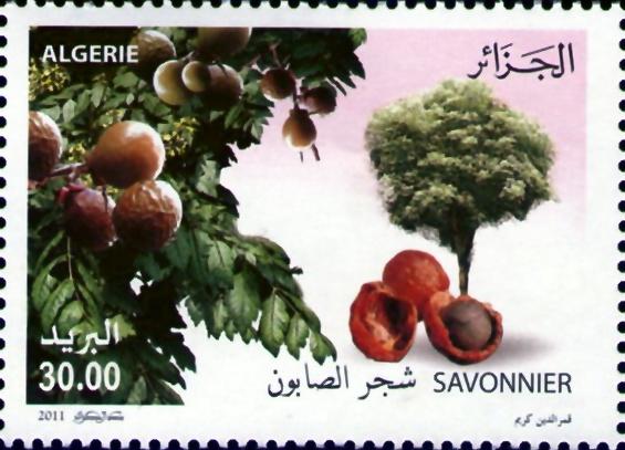 2011, Année Internationale de la Forêt Timbre12