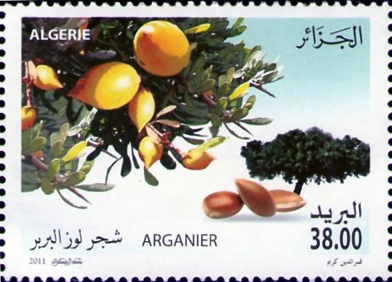2011, Année Internationale de la Forêt Timbre13