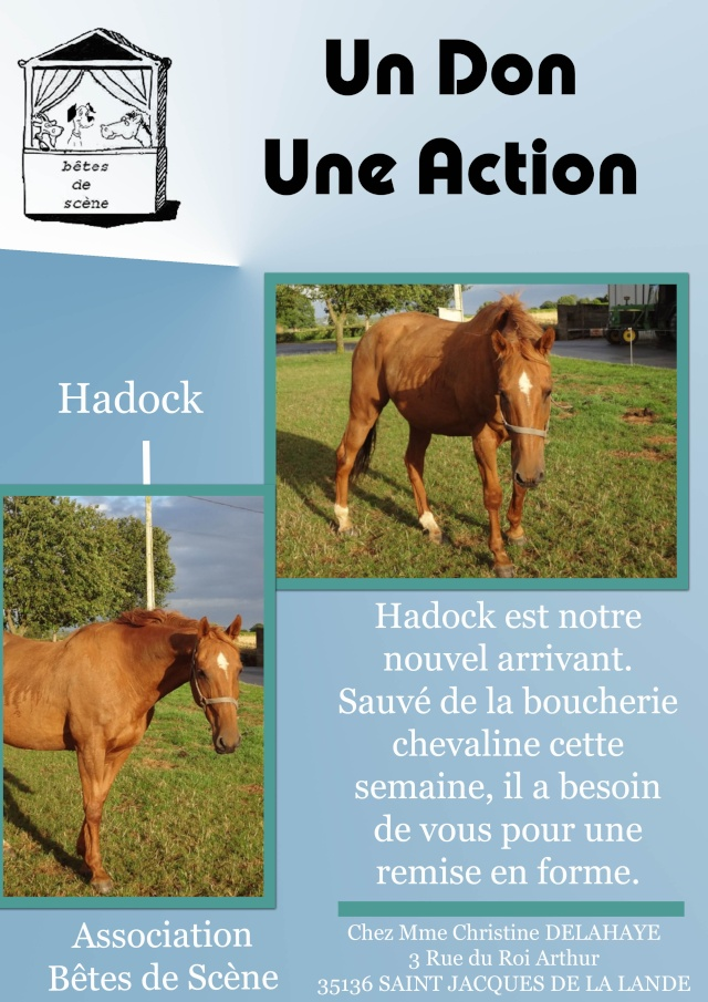 affiches pour stand BDS Hadock10