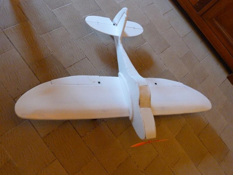 Avion en dépron - Page 22 P1020313