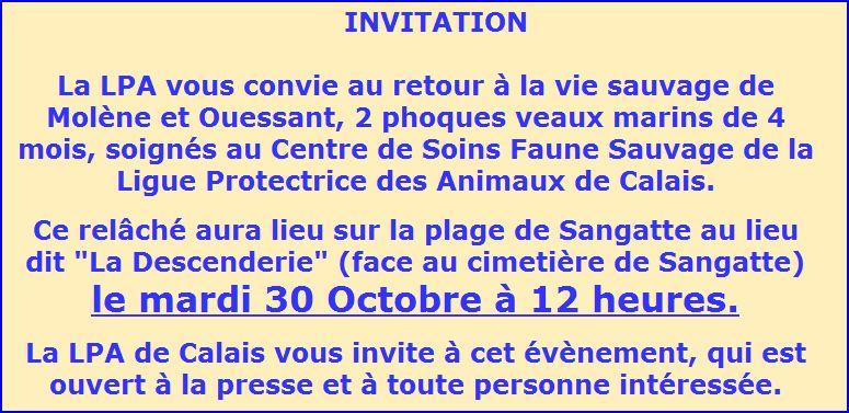 Invitation pour assister au relâché de 2 phoques à Calais (62) Fff10