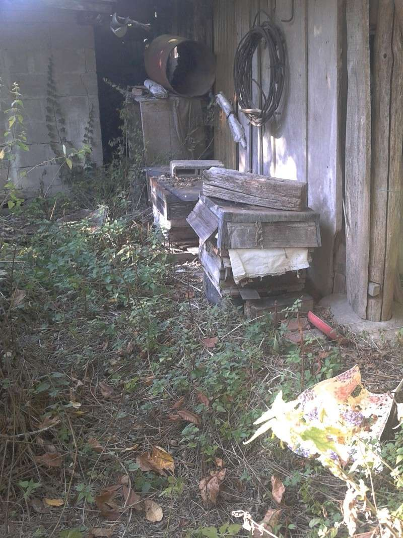 visite d'un rucher qui n'a pas été vu depuis près de 5 ans... - Page 3 2012-016