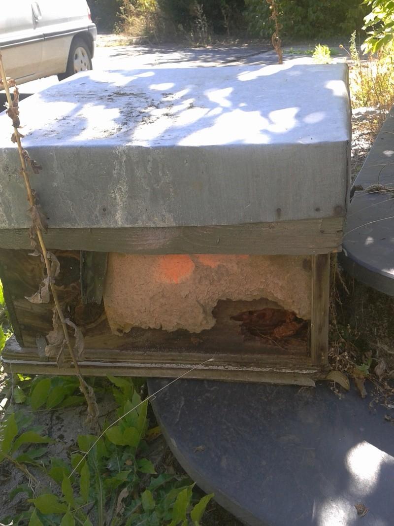 visite d'un rucher qui n'a pas été vu depuis près de 5 ans... - Page 3 2012-019