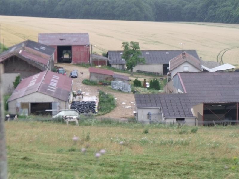 visite de la ferme de ma tante (suite) Dscf0432