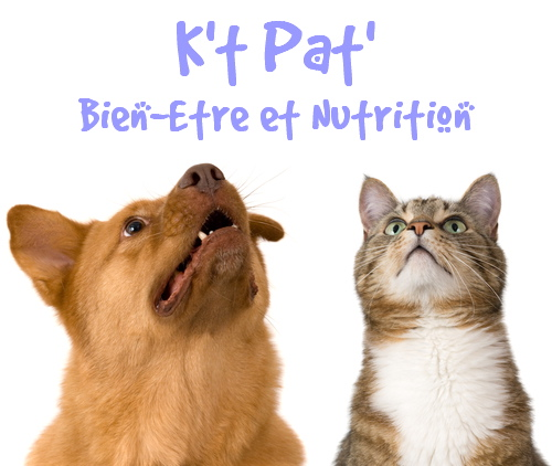 K't Pat' Bien-Être et Nutrition