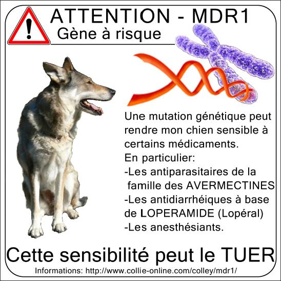 Vermifuge Profender (Bayer) Mdr110