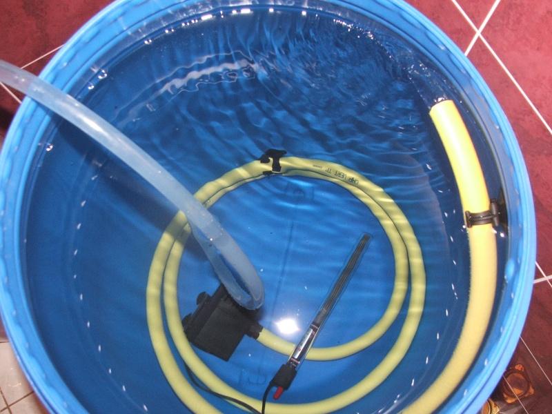 ma technique de changement d eau sans prise de tete..... Dscf5513