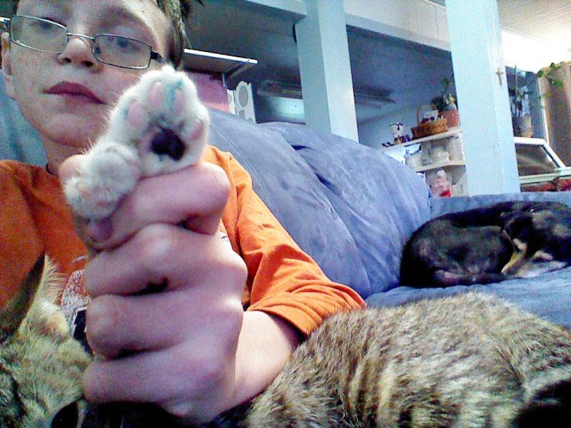 TFF:Post a pet  2013-013