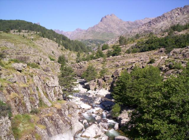 Mon carnet de voyage en Corse. 101_0611
