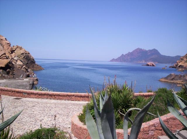 Mon carnet de voyage en Corse. 101_0613