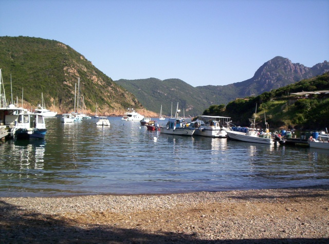 Mon carnet de voyage en Corse. 101_0617