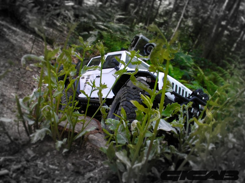 Les aventures de l' axial wraith de Gicab Sany0012