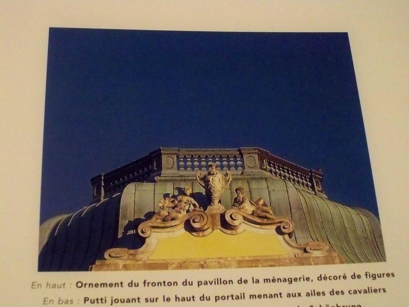Le palais de Schönbrunn - Page 4 01013
