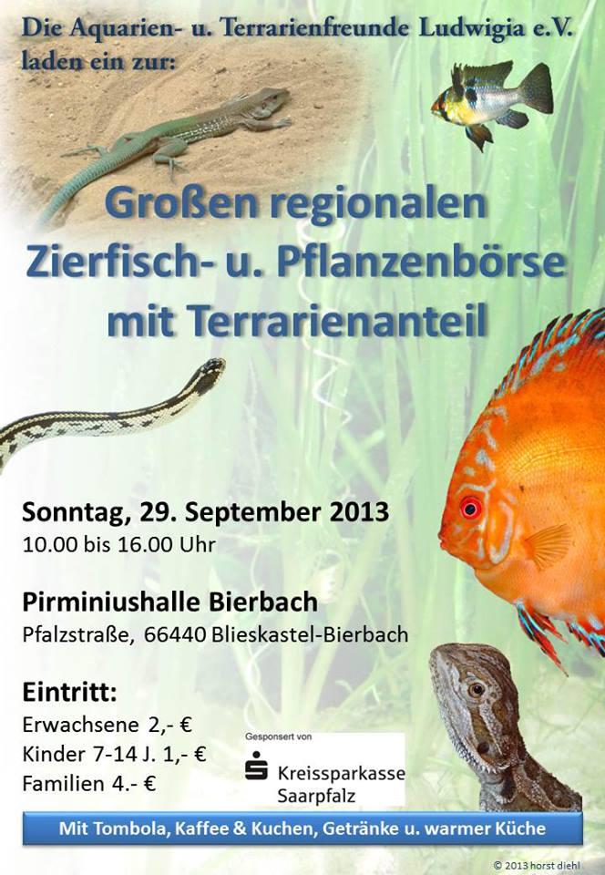Bourse Aqua/Terrario - Bierbach (DE) - 29 septembre 2013  10131810