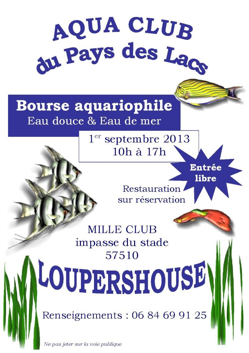 Bourse aux poissons - Loupershouse - 1er septembre 2013 Affich11