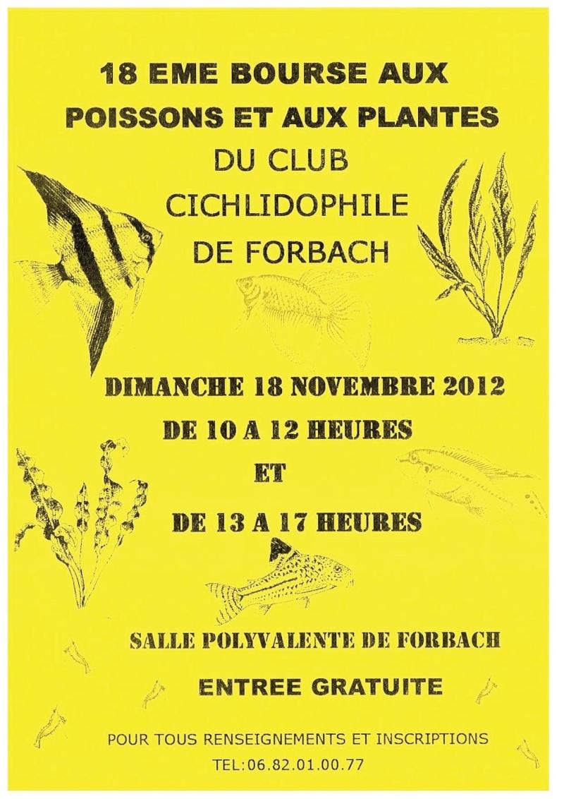 Bourse aux poissons et plantes à Forbach 18 novembre 2012 Bourse10