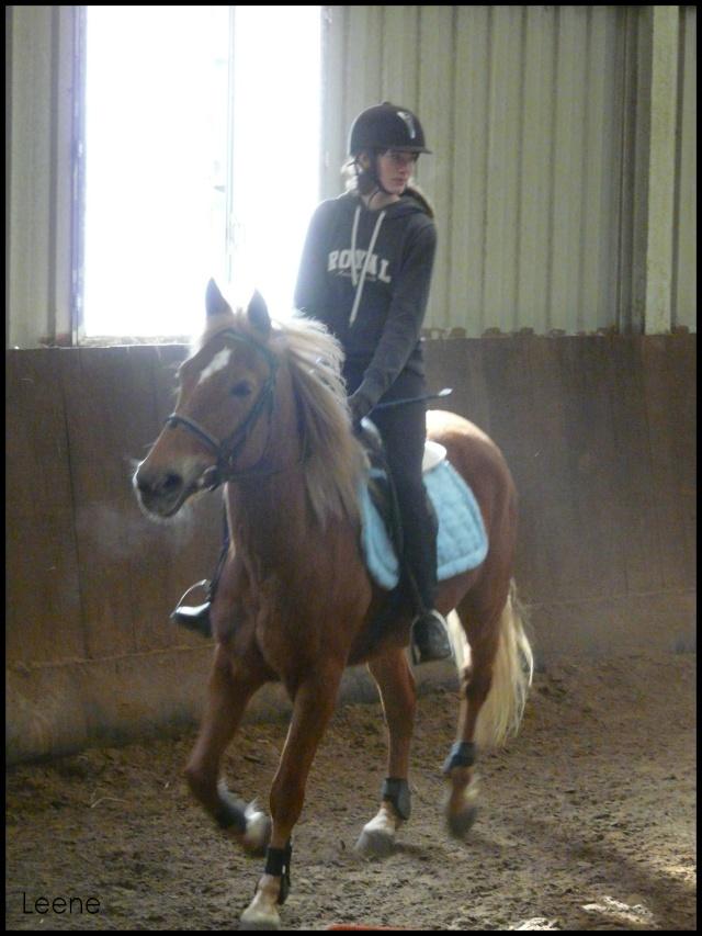 ♣ photos de vous à cheval Berto_11