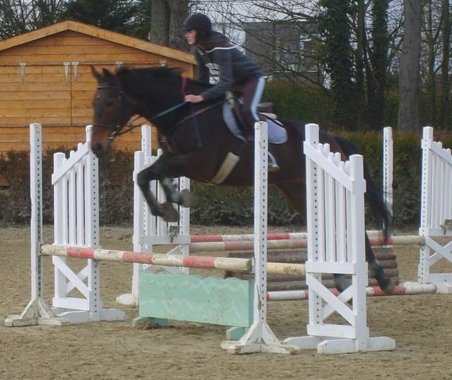 ♣ photos de vous à cheval S6000010