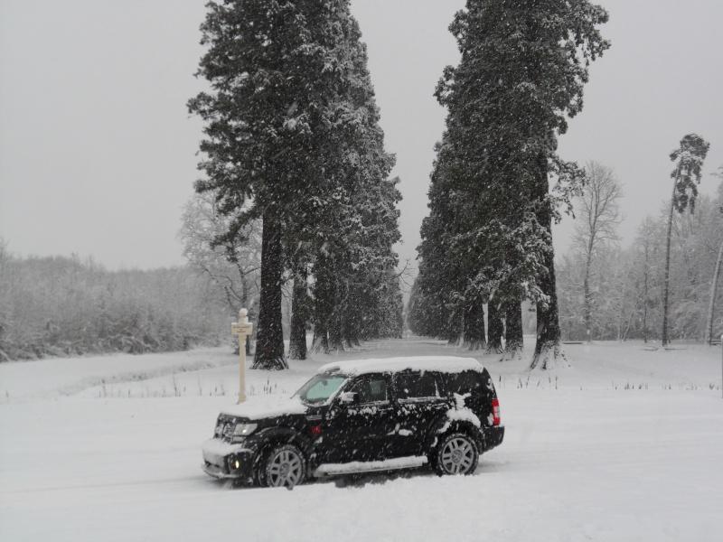 [Concours interne] Photo du mois ! [Janvier 2011] 35110