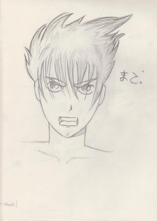 dessins normands (bikono) Portra11