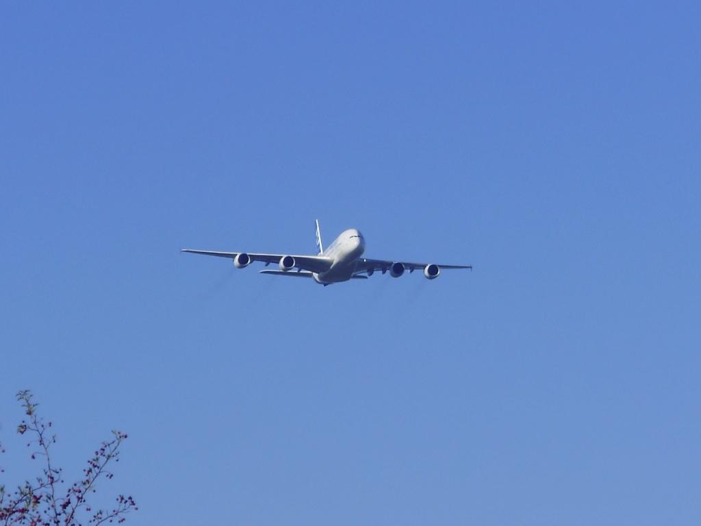 [29/08/2010] Visite de l'Airbus A380 à Nantes-Atlantique ! La10