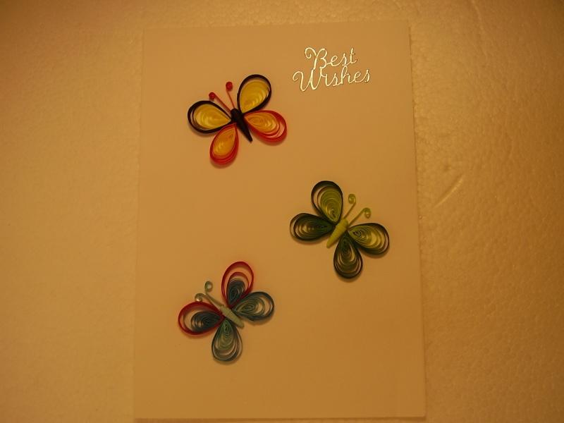 Multi colour butterflys 01310