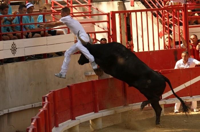 LANSARGUES - Concours de Manades-12-08-2012 Avenir10