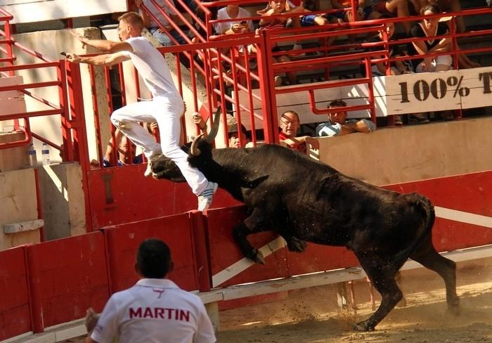 LANSARGUES - Concours de Manades-12-08-2012 Avenir12