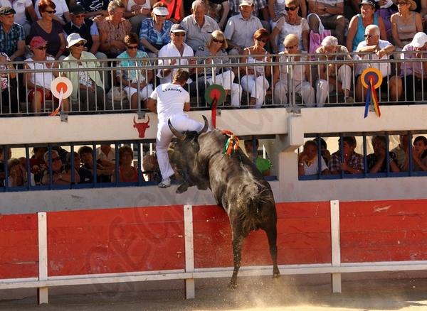 Finale du Trophée de la Mer Grau du Roi 16-09-2012 Finale16