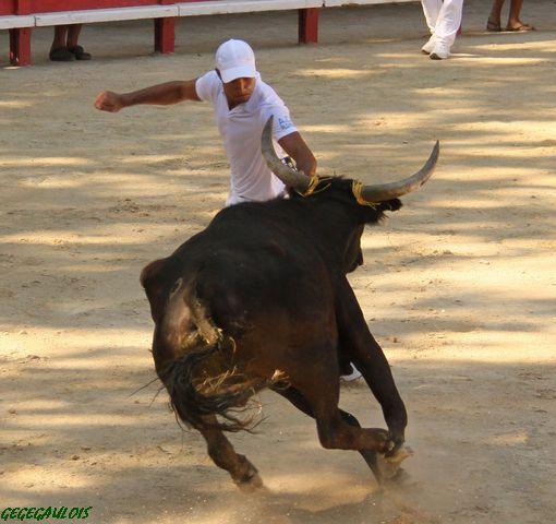 Trophée du Muscat  1° Journée  LUNEL  11-07-2010 Lunel-11