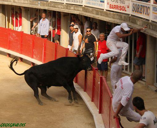 Trophée du Muscat  1° Journée  LUNEL  11-07-2010 Lunel-12