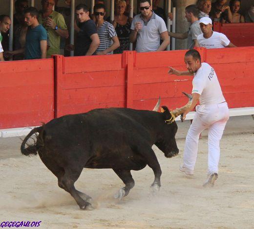 LUNEL  3° Journée Trophée du Muscat   FINALE   17-07-2010 Lunel-16