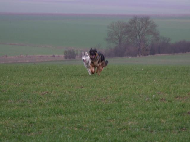 Fundy & Emile 2006_031