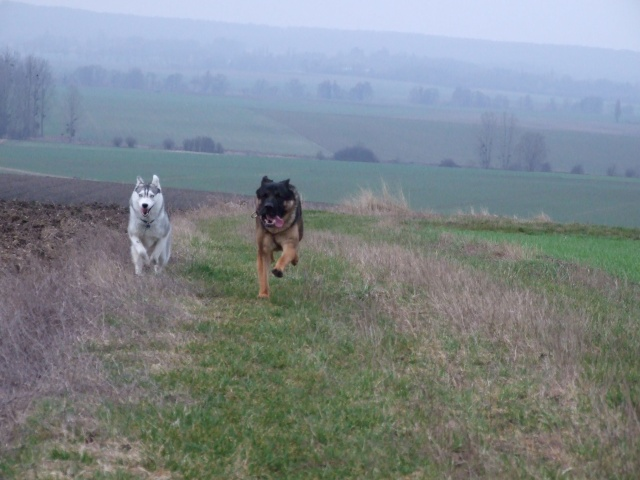 Fundy & Emile 2006_032