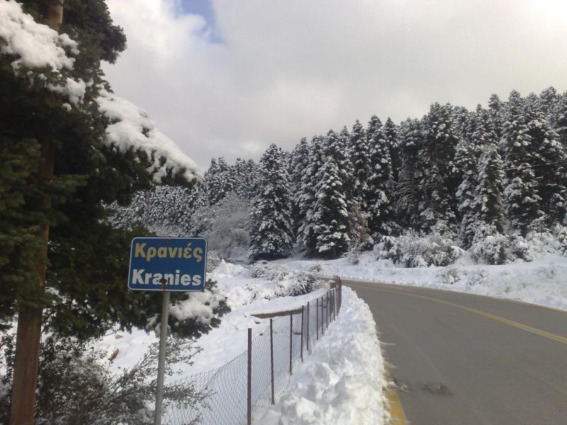 Φωτογραφίες απο τις Κρανιές (υψόμετρο 1000μ) 19022010