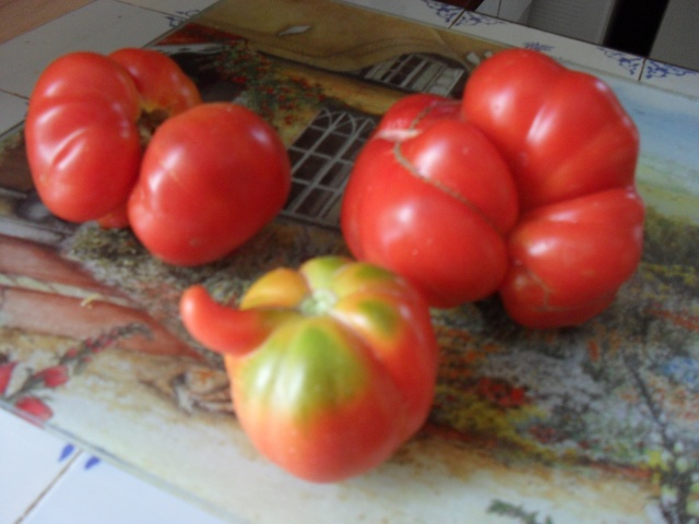 Légumes aux formes bizzares. 00415