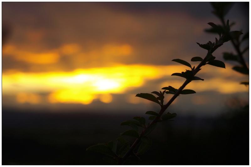 Coucher de soleil (sur la lointaine chaine des puys) P7296712
