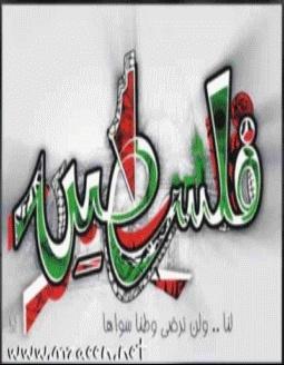 لن ننساكي يا غزة