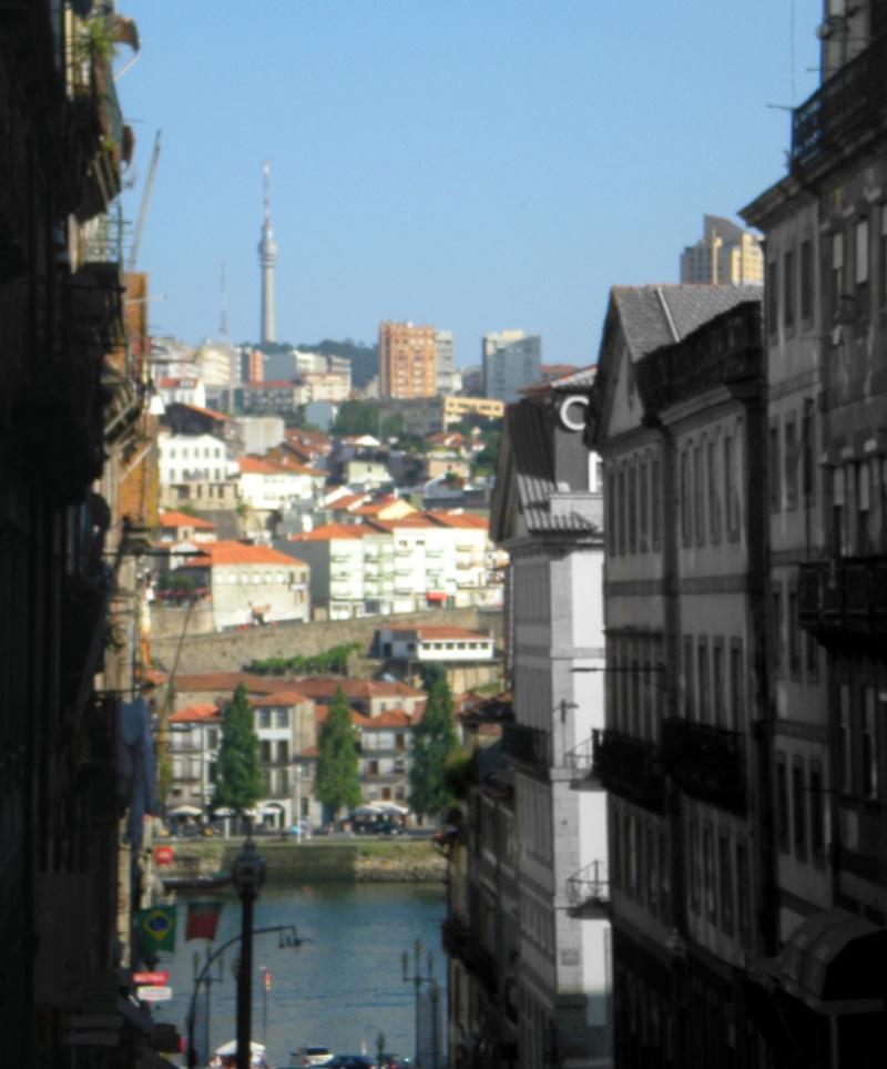 Porto ( Portogallo ) Dscn1814