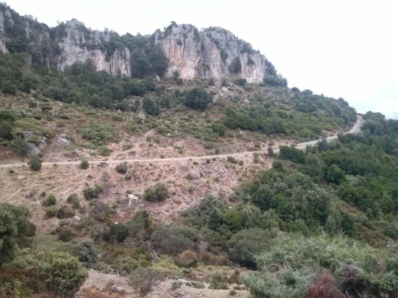 La Valle delle Cattedrali Cam01612