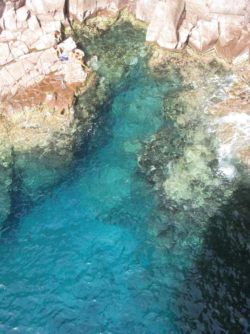 Isola di S.Pietro. Img_0416