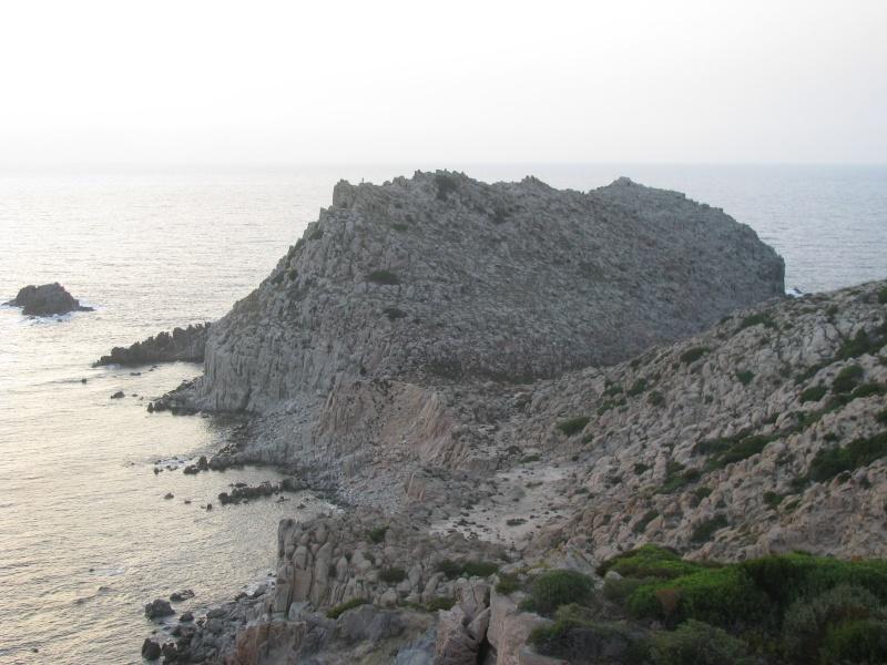 Isola di S.Pietro. Img_0517