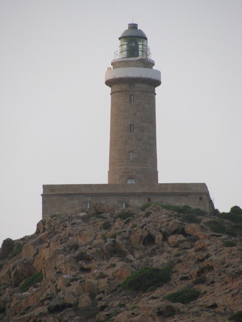 Isola di S.Pietro. Img_0519